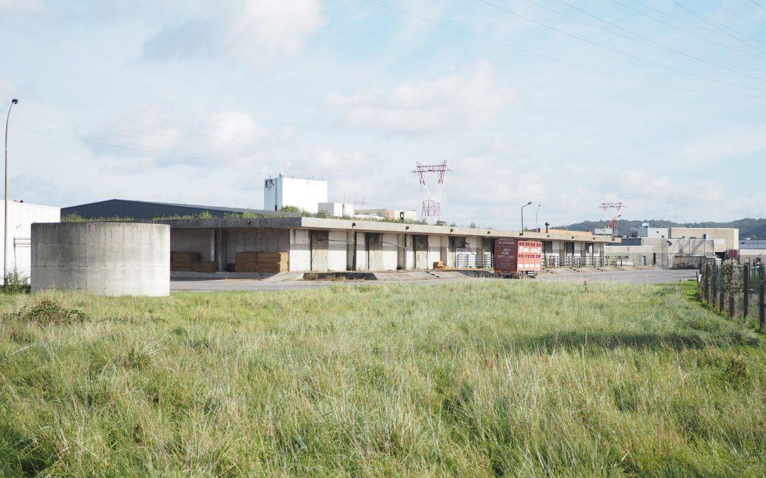 Le scandale Veviba profite à l'abattoir de Liège
