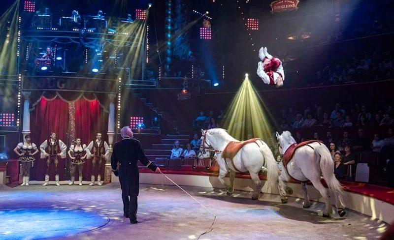 Le spectacle du cirque européen commence aujourd'hui boulevard d'Avroy pendant un mois
