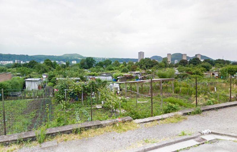 Potager de Bressoux: des jardiniers contaminés aux métaux lourds