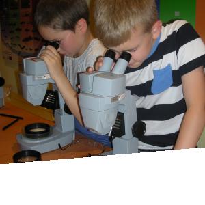 Agenda ► Aquarium – Muséum : Stages pour enfants