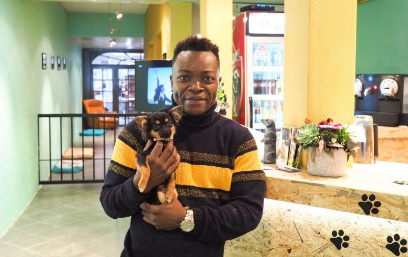 Le premier café à chiens a ouvert à Liège