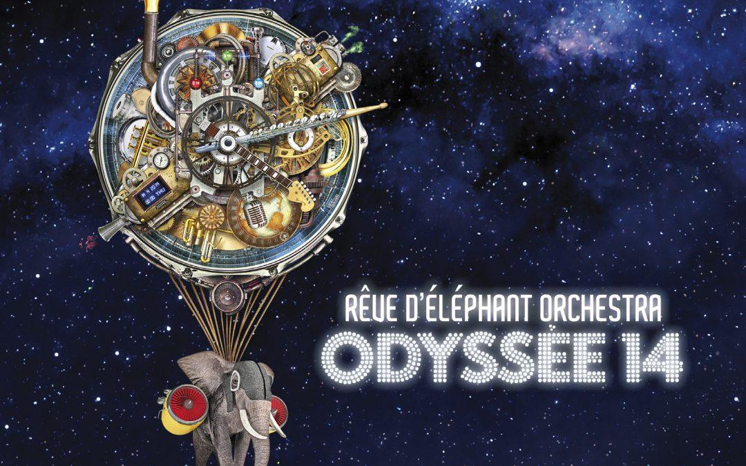 Agenda ► Odyssée 14 du Rêve d'éléphant Orchestra