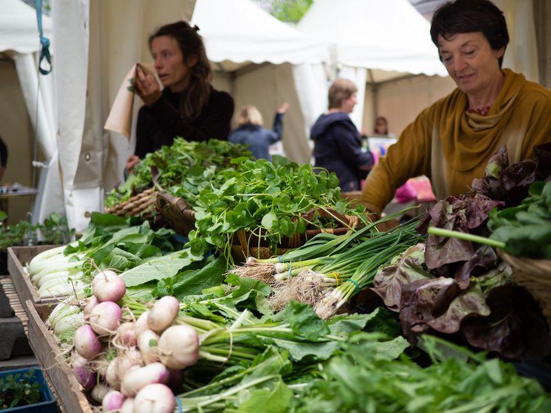 Le marché des producteurs locaux redémarre aujourd'hui place Xavier-Neujean
