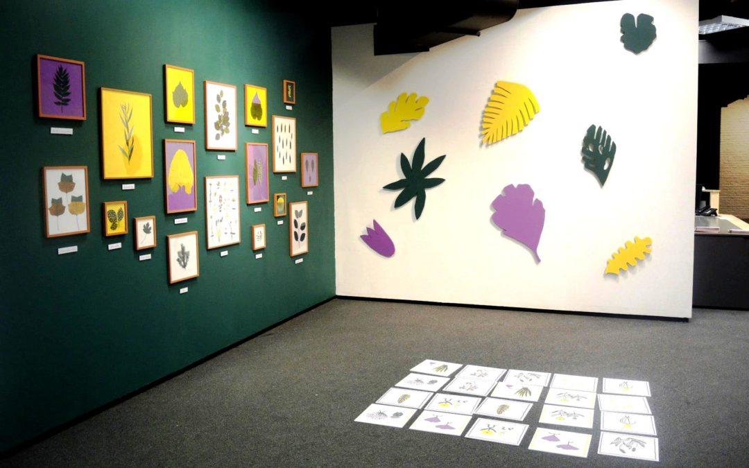 """Agenda ► Visite expo """"Collections"""" + atelier créatif parent/enfant"""