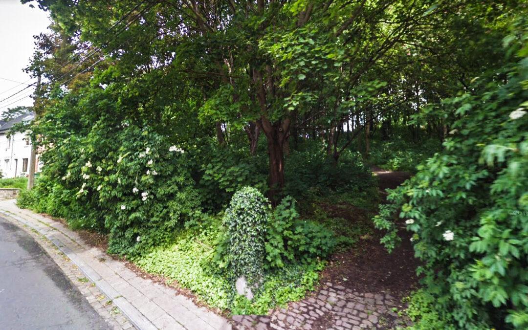 Un sentier privatisé dans un petit bois fait réagir les habitants de Naimette-Xhovémont